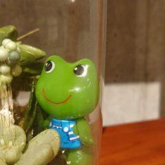 ✩大好評✩ 吉祥寺限定イベント カエルちゃんはどこ?をご紹介